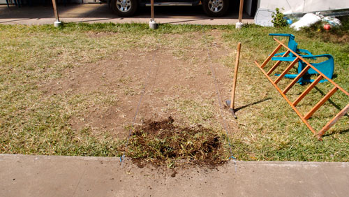 The start of the path we built at the GV office.