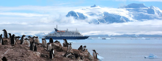 A view of our ship behind a penguin colony.