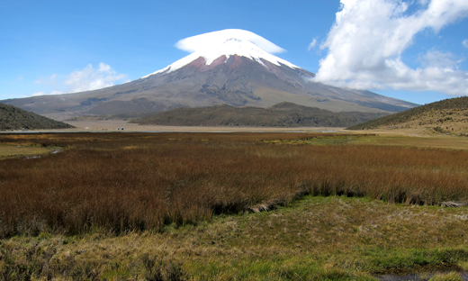 The view of Volcan Cotopaxi from our hike around the lake.